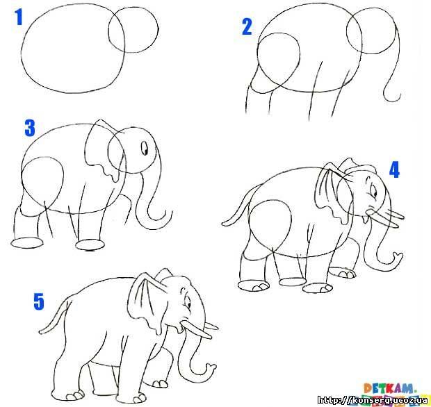 Как рисовать слона, учится