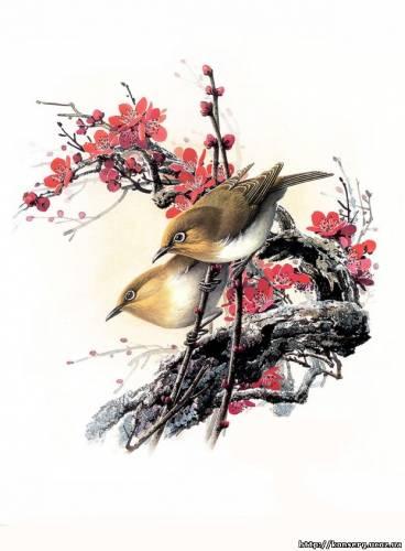 Обр мистецтва птахи фотографія 3 птахи
